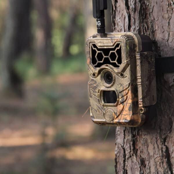 trail-camera